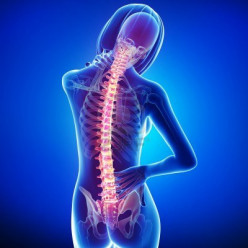Types of Back Pain & Causes