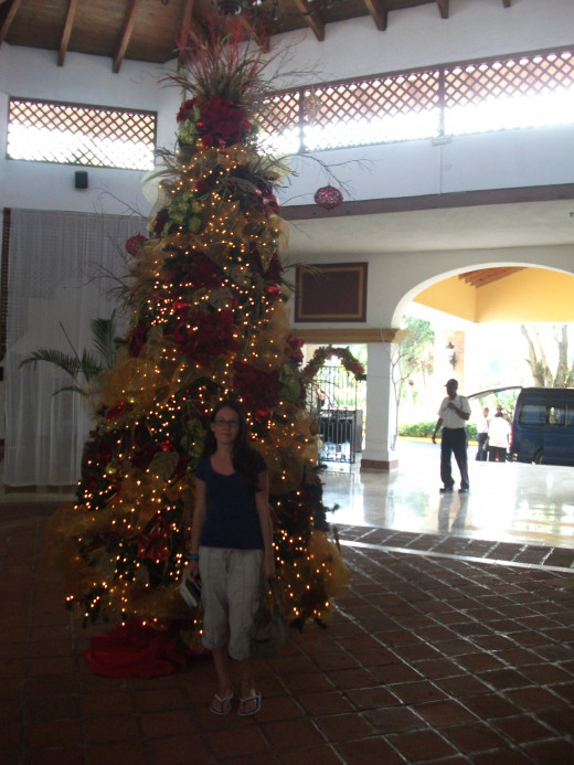 We visited the Occidental Grand during Christmas Break. They did a wonderful job of decorating for Christmas.