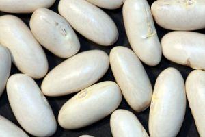 White beans.