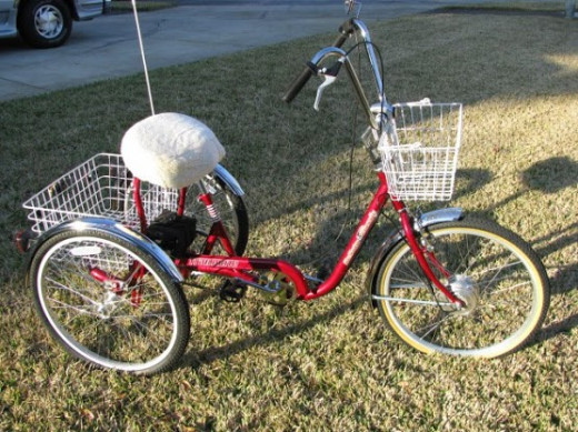 A Clean Republic Converted Tricycle