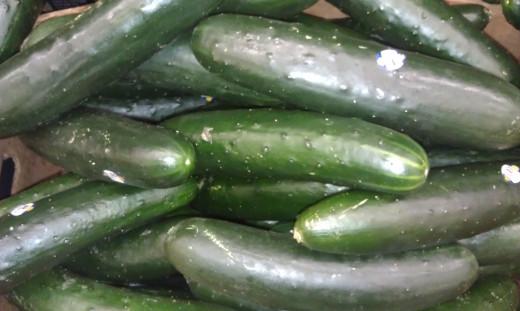 Cucumbers (contain vitamin C, silicon, water)