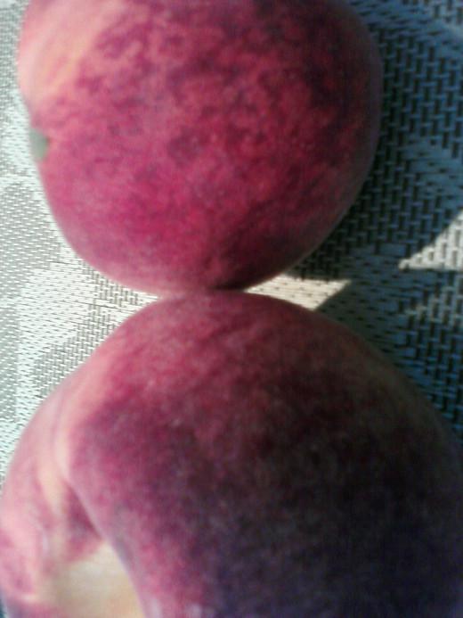 Peaches (vitamin C, sugars, water)