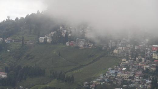Strolling hills of Darjeeling