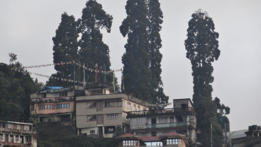 Scenery of Darjeeling