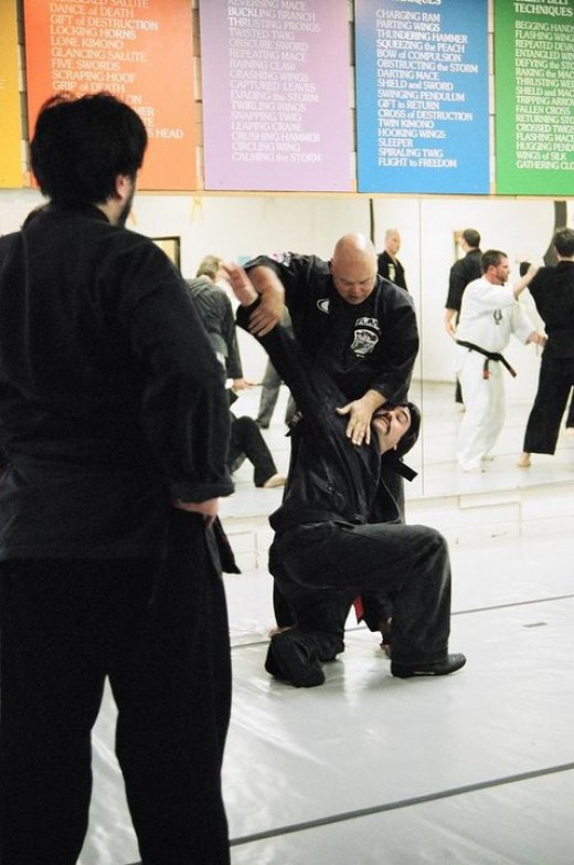 Some martial arts emphasize grappling, some emphasize striking, while others involve both.