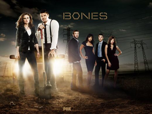Wait... wrong bones!