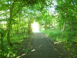 One of the walking lane entrances to Lochore Meadows.