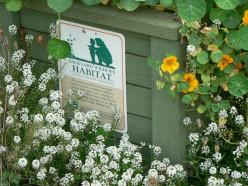 Make Your Own Backyard Wildlife Habitat