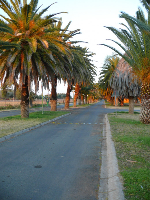Entrance to campground in Upington