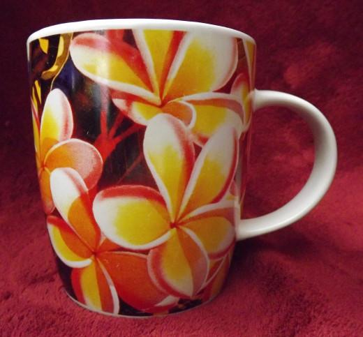 Hawaiian Odysseus Mug Shot