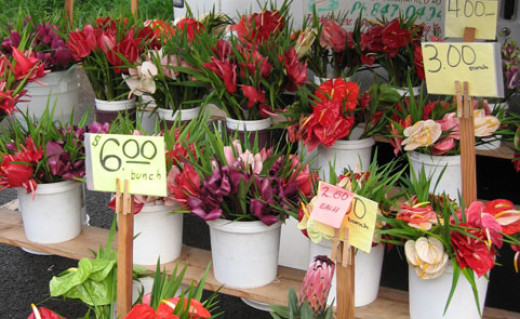 You can easily find bouquets of exotic flowers, just picked that morning, for only a few dollars.