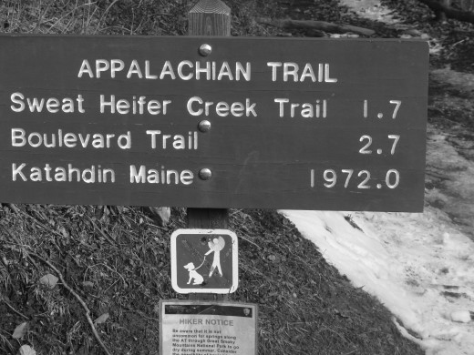 Trail sign in Great Smoky Mountain National Park, on the Tennessee-North Carolina border.