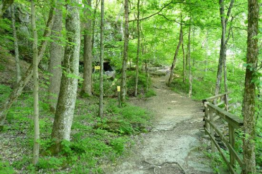One of the hiking trails at Clifty Falls State Park