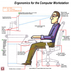 Best Ergonomic Office Chair Leather & Mesh 2014 Review
