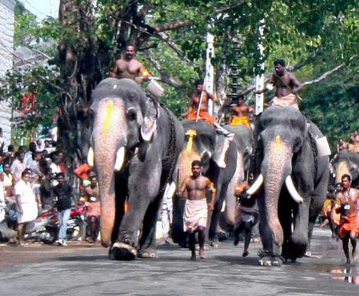 'Anayottam' (Elephant race) at Guruvayoor