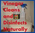 Vinegar: Safe and Efficient Green Cleaner