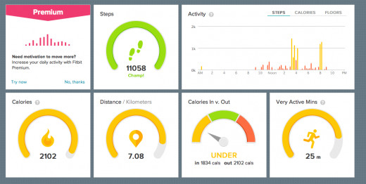 My fitbit dashboard