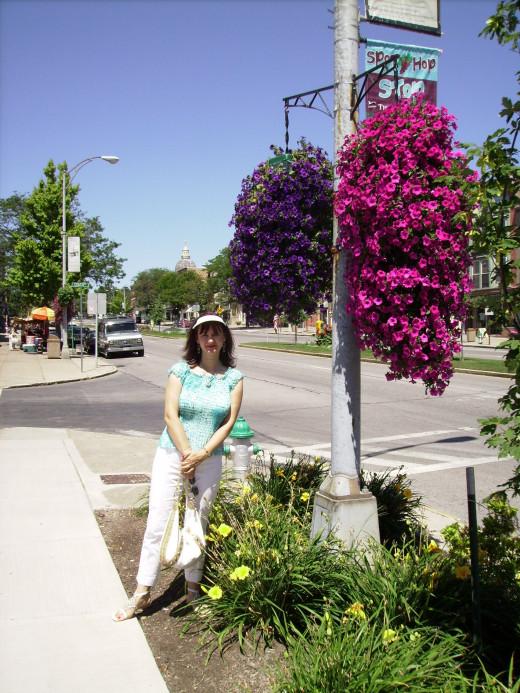 Flowers along South Main Street in Canandaigua, NY