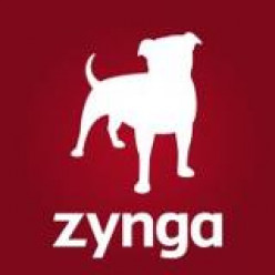 Zynga has hired Don Mattrick, the former head of Microsoft's entertainment division, as its new chief executive officer, seeking to reignite growth at the game developer. Mattrick will succeed Mark Pincus, who will remain chairman of the board and ch