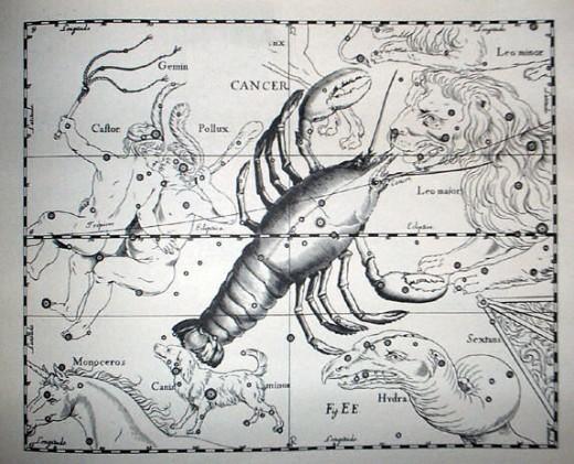 Cancer Constellation by Johannes Hevelius