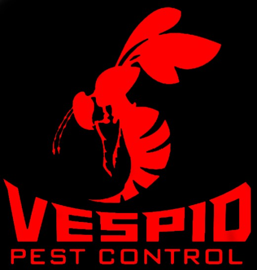 Vespid Pest Control Updated Design for their Facebook Page, was able to draw a bit more of that needed attention for success.