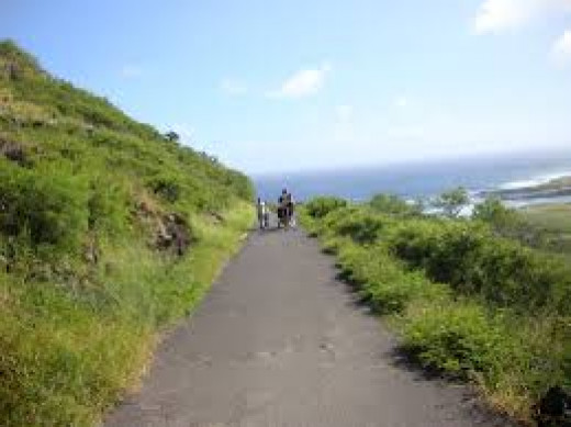 Although this is graded as a moderately difficult hike, families with older children and teens often enjoy this hike.