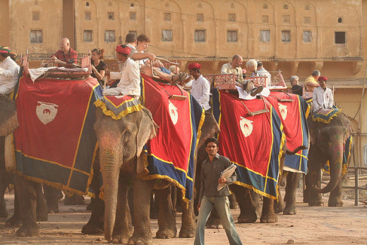 Elephant ride to reach Amber Palace