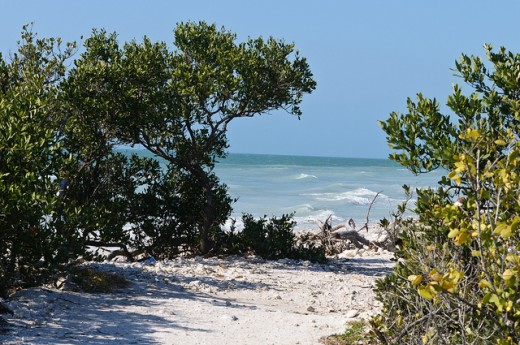 One of the many haunted beaches in Florida...do pirates haunt this beach?