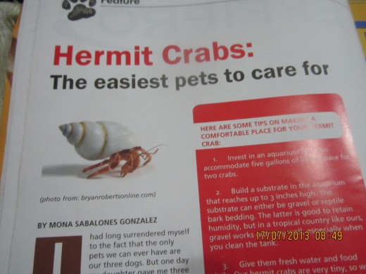 An edited version of this article was featured in Animal Scene, a local magazine in The Philippines
