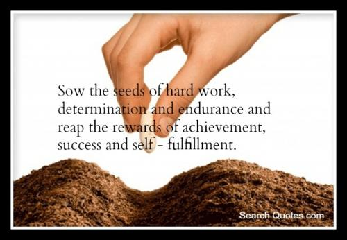 Sow the seeds of determination
