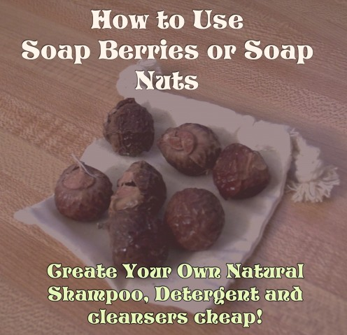 How to Use Soap Berries or Soap Nuts
