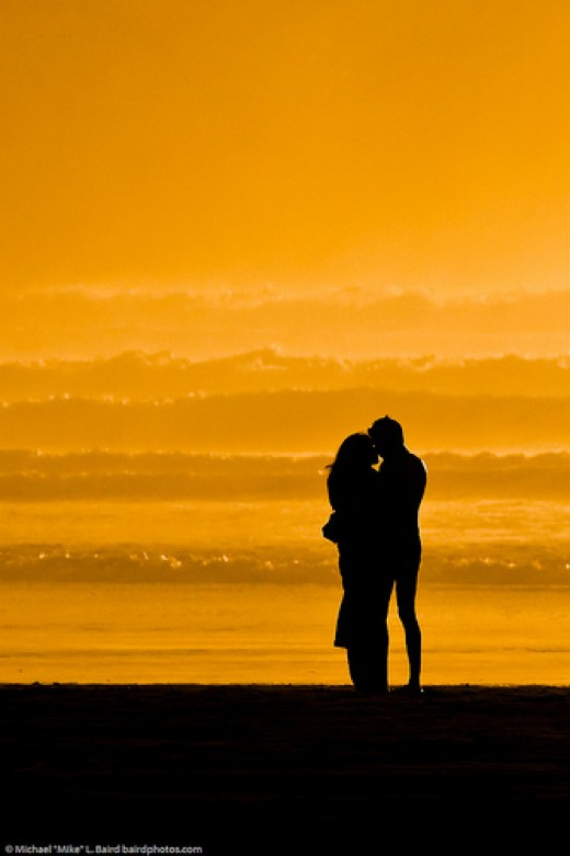 Lovers embracing on the beach at sunset from Mike Baird  flickr.com