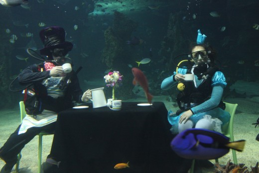 By our final stop, I began to feel myself floating like a guest at the Mad Hatter's Underwater Tea Party!