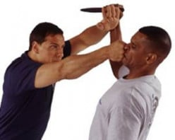 The combative system of Krav Maga