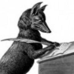 Writer Fox