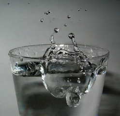 Importance of Water in the Human Body