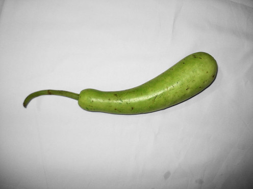 Bottle gourd is very beneficial for various health problems