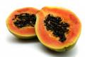 Papaya - a Medicinal Plant
