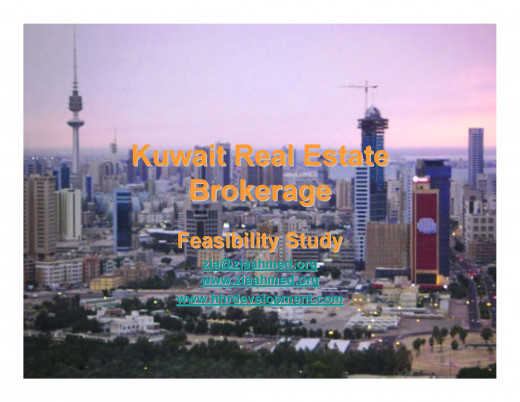 Real Estate Brokerage EShop Idea