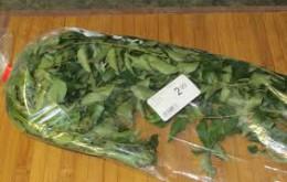 Dry Curry Leaf