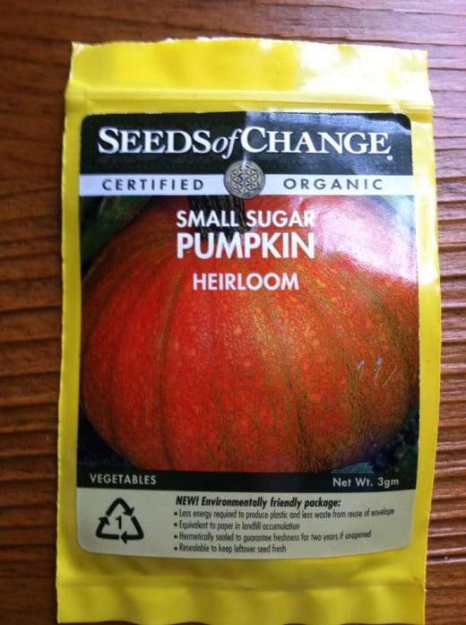 "Organic pumpkin seeds, like Seeds of Change ""sugar pumpkin"" are easy and fun to grow."