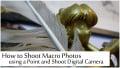 How to Shoot Macro Photos using a Point and Shoot Digital Camera