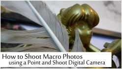How to Shoot Macro Photos using a Point and Shoot Digital Camera