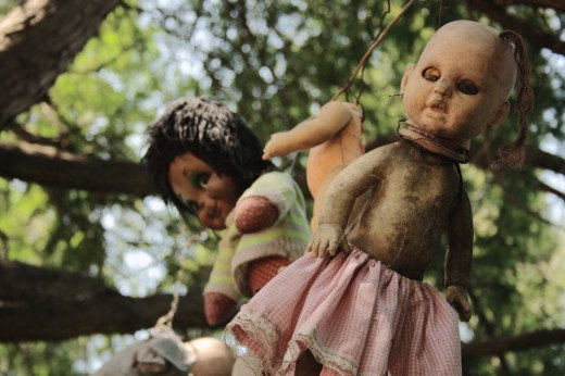 Some of the real haunted island dolls from Isla De Las Munecas, in Xochimilco, Mexico.