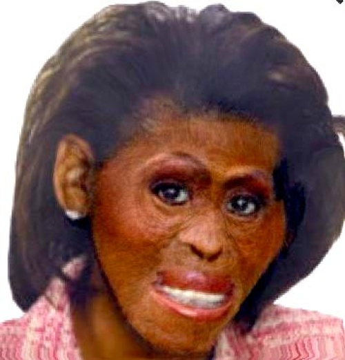 Right-wing propaganda dehumanizing Michelle Obama.