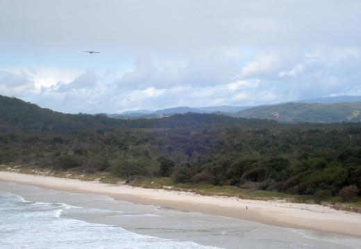 Diamond Beach and Brahminy