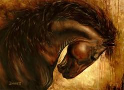 Stallions Last Dance/Lone Wolf Howl