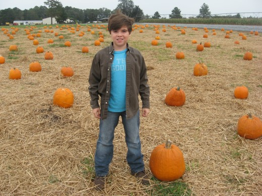 My grandkids love the Pumpkin Patch!