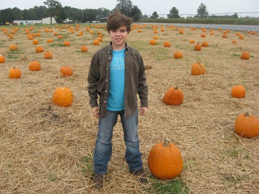 My grandkids love the Pumpkin Patch!