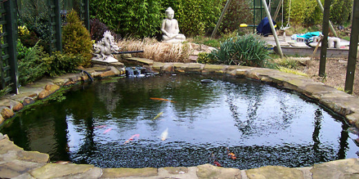 A beautiful garden pond